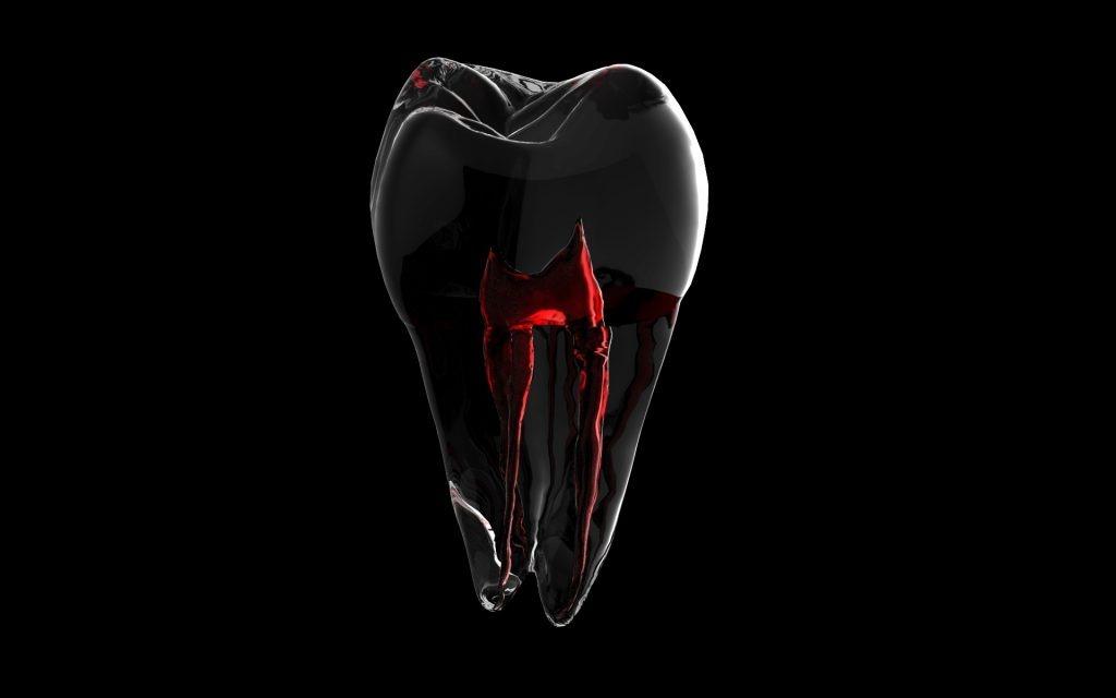 kanal tedavi diş özü